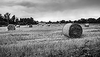 Dry Field And Bale - Le Mans, France, July 2017