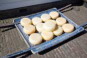 Cheese, Zuiderzee museum, Enkhuizen, Netherlands