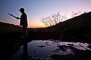 Parauapebas_PA, Brasil...Coleta das folhas do Jaborandi (Pilocarpus pennatifolius) na Floresta Nacional de Carajas, Para...The harvest of the Jaborandi leafs (Pilocarpus pennatifolius) in the Carajas National Forest, Para. ..Foto: JOAO MARCOS ROSA / NITRO.