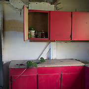 Guayama, Puerto Rico - July 6, 2018: Vines slowly grow in the kitchen of Pedro Ortiz's house destroyed by Hurricane Maria. His son Devin plays for the 12 and Under selection from Guayama which will compete in Little League World Series.<br /> (Angel Valentin for ESPN)