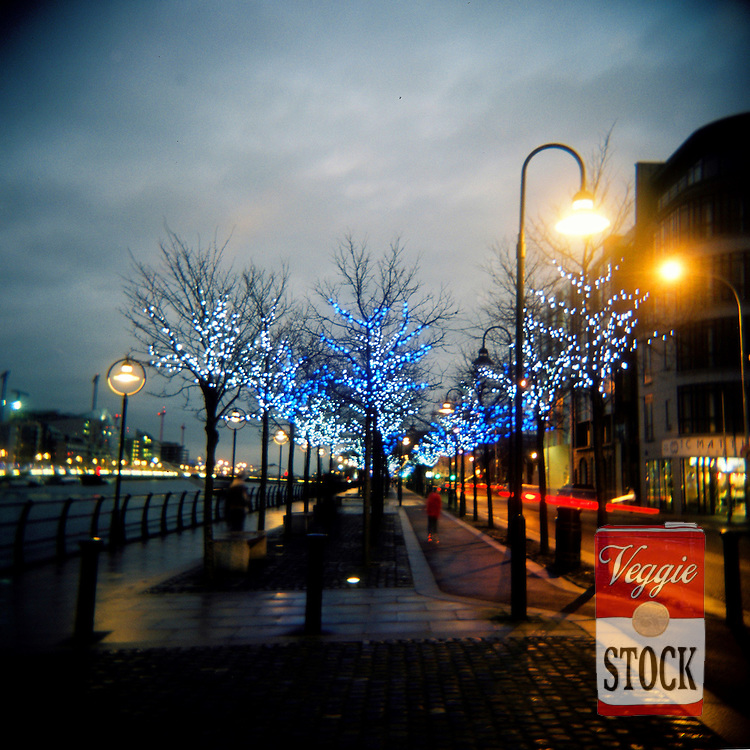 Christmas lights along City Quay, Dublin, Ireland, December 2008.