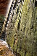 Ribbon Falls in the Grand Canyon