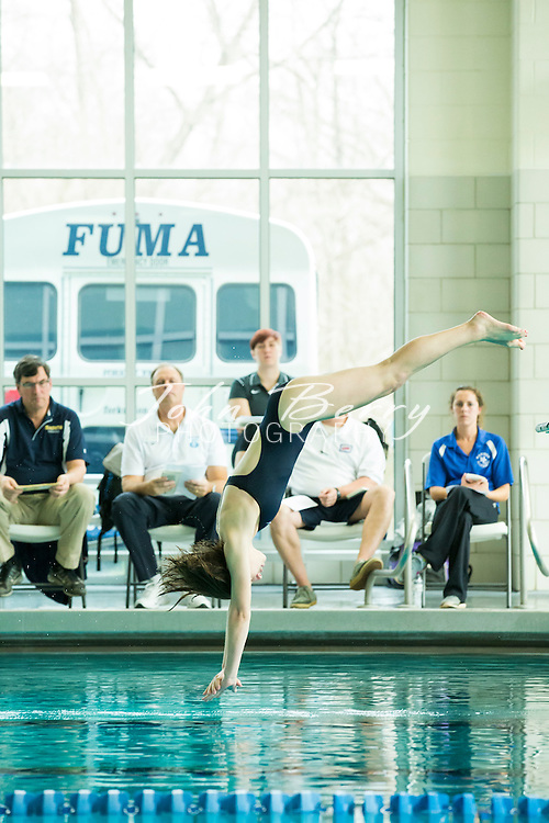 February 08, 2016.  <br /> Regional Dive Meet at FUMA.