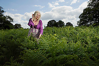 Woman Walking in a Meadow of Ferns