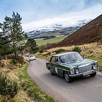 Car 82 Agnete Segalstad / Ole Rasmus Robak Mercedes-Benz 200/8
