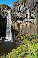 Islande. Skaftafell.  Orgues basaltiques et chutes d'eau de  Svartifoss. // Iceland. Skaftafell. Svartifoss waterfall.