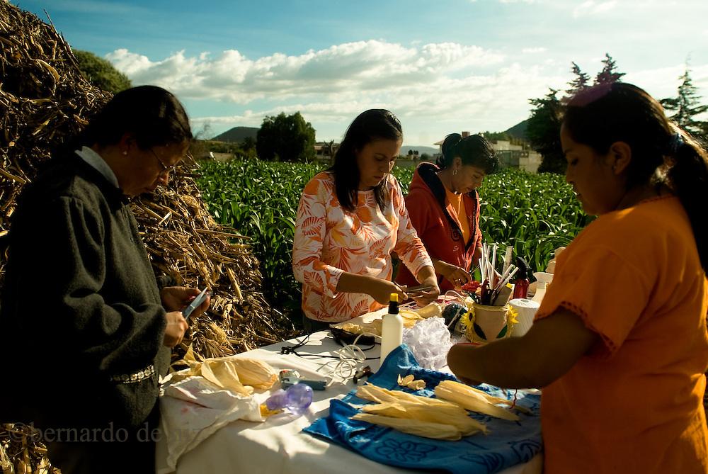 Traditional corn farming  in the central Puebla state in Mexico. Photographer: Bernardo De Niz.