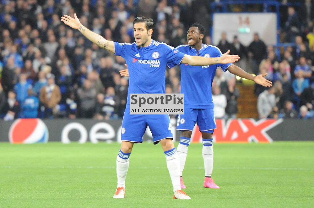 Chelseas Cesc Fabregas reacts to the length of taken for the opposition to take a throw in during the Chelsea v Dynamo Kiev champions league match in the group stage on the 4th November 2015