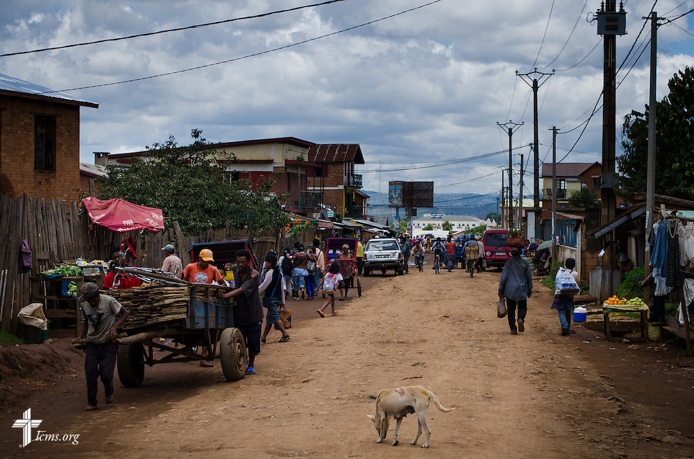 A dog wanders a street in Antsirabe, Madagascar, on Thursday, Feb. 6, 2014. LCMS Communications/Erik M. Lunsford