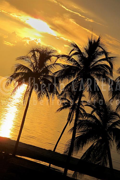 Alberto Carrera, Sunset and palms, Caribbean, Isla de la Juventud, Cuba, America