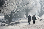 UNITED KINGDOM, London: 18 January 2017 Morning walkers make their way through a frosty Richmond Park during sunrise this morning. Temperatures dropped to -4C in certain parts of the capital last night causing wide spread frost. Rick Findler / Story Picture Agency