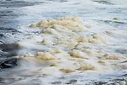 Sea foam on stream, Kolekole Gulch Park, Honomu, on the Big Island, Hawaii, USA.
