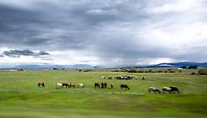 sun valley, Wyoming