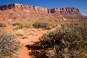 11 AUGUST 2008 -- CLIFF DWELLERS, AZ: The Vermilion Cliffs, which lie along the southern edge of the Paria Plateau and the northern edge of the Arizona Strip, rise 3,000 feet in a spectacular escarpment capped with sandstone underlain by multicolored, actively eroding, dissected layers of shale and sandstone. The Arizona Strip is the high desert in Arizona between the North Rim of the Grand Canyon and the Utah state line. It is a very arid region, most of the vegetation is sagebrush with juniper and pinion trees at higher elevations. The two largest communities on the strip are Fredonia, south of Kanab, UT and Colorado City, which is east of St. George, UT.       PHOTO BY JACK KURTZ