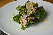 Foraged Salad: French Breakfast radish, Champagne vinaigrette, parmesian crisp