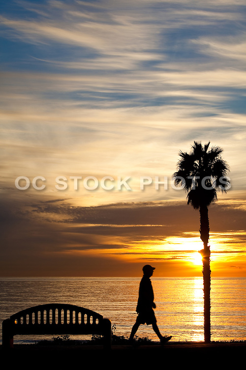 Going For A Walk Along The Beach At Sunset