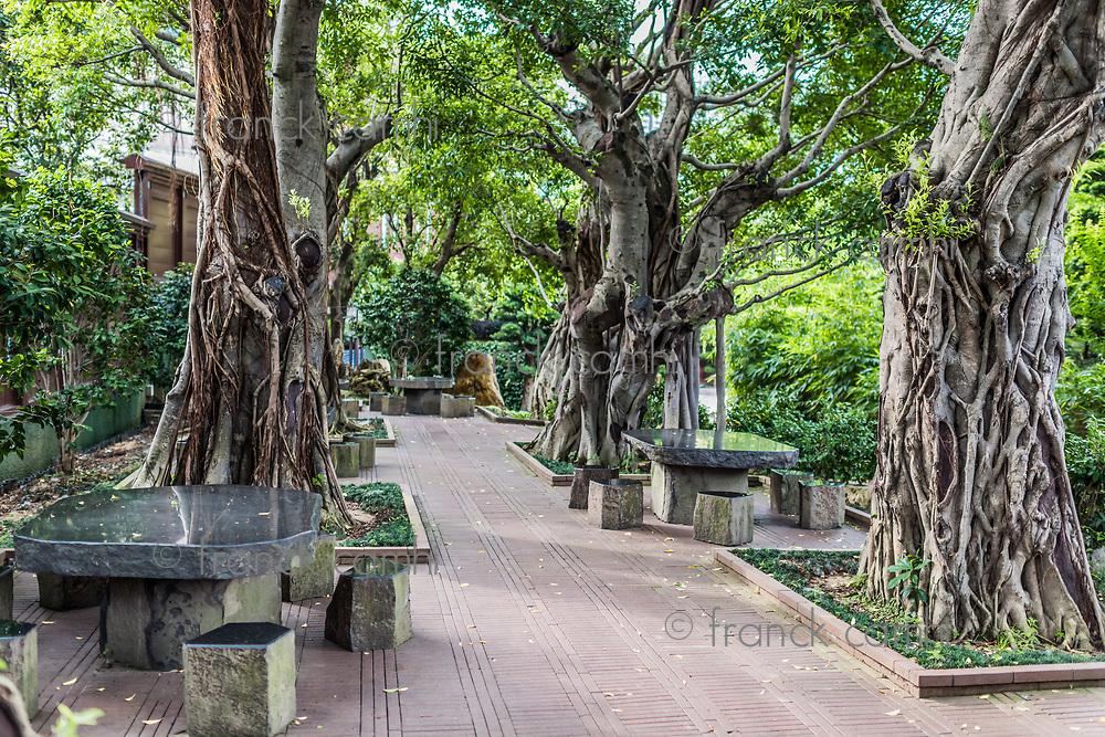 garden Chi Lin Nunnery Kowloon in Hong Kong