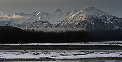 Morning sunlight begins to shine on the mountains seen from the Alaska Chilkat Bald Eagle Preserve located at the confluence of the Chilkat River and Tsirku River near Haines, Alaska.