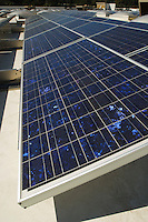 Solar Panels at Solar Power Plant