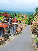 Street through a typical east Bali village with traditional buildings and the forests stretching away into the distance.