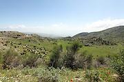 Golan Heights landscape
