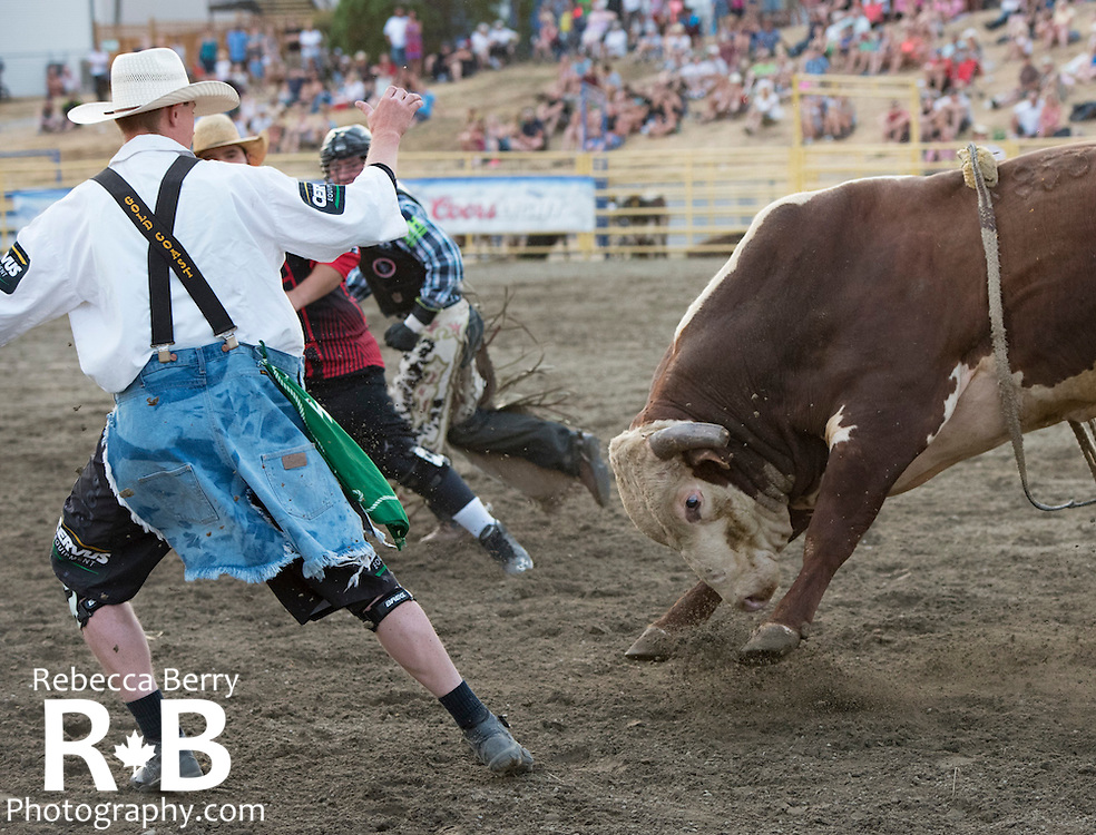 Bull riding at the Mighty Fraser Pro Rodeo during Agrifair in Abbotsford B.C. July 31 -August 2, 2015.