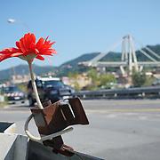 Ponte Morandi GENOVA a un mese dal crollo