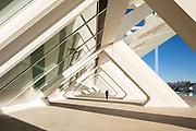 Ciutat de les Arts i les Ciencies | Santiago Calatrava | Valencia, Spain