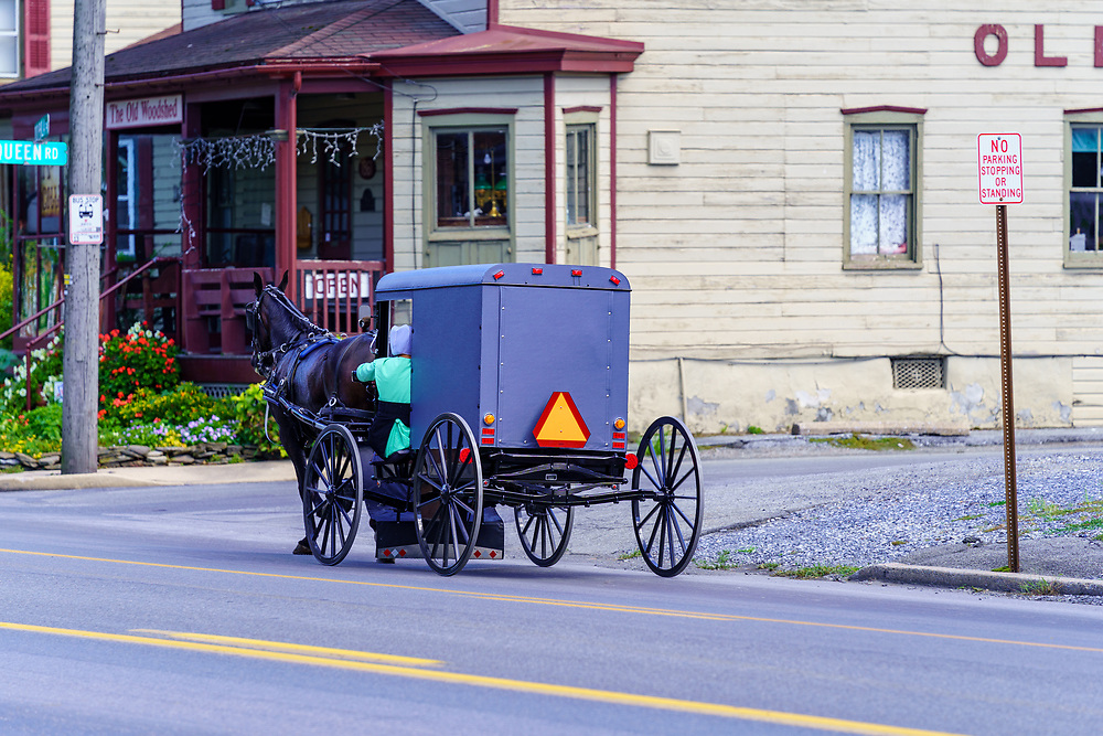 Intercourse, PA, USA - August 30, 2020: An Amish buggy travels on a rural road in Lancaster County.