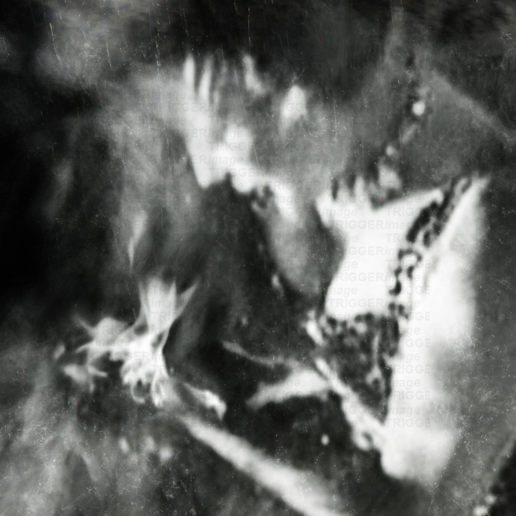 a woman gazes down into the flames in her hands