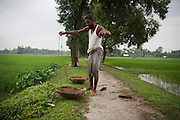 A enclave resident works in the Dhoholakhagrabari enclave whilst collecting weeds and grass to feed his cows. This path forms the boundary between Indian and Bangladeshi territory with the land in front of him being inside an enclave and behind being Bangladesh.<br /> <br /> Enclaves are small pockets of sovereign land completely surrounded by another sovereign nation. Approximately 160 enclaves, known as chitmahals, exist on either side of the India-Bangladesh border. For 68 years the 50,000 plus inhabitants of these enclaves have lived a difficult existence, stranded from their home nation and ignored by the country that surrounds them. <br /> <br /> In theory even leaving their enclaves is illegally crossing an international border and for decades it has been very difficult for them to receive even the most basic of rights whether education or health. Even the police have no jurisdiction in the enclaves leaving them essentially lawless.