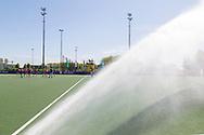 Den Bosch - Den Bosch - SCHC  Dames, Halve Finale  Playoffs, Tweede wedstrijd, Hoofdklasse Hockey Dames, Seizoen 2017-2018, 05-05-2018, Den Bosch - SCHC 4-2,  sproeien<br /> <br /> (c) Willem Vernes Fotografie
