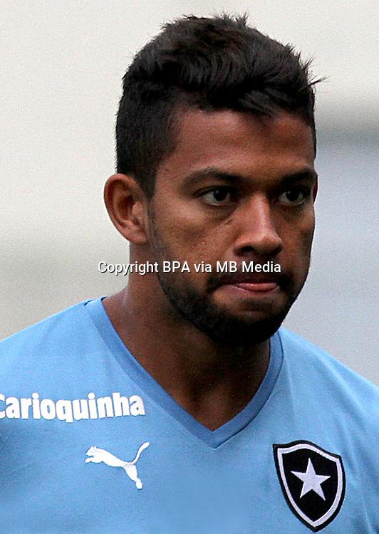 Brazilian Football League Serie A /<br /> ( Botafogo de Futebol e Regatas ) -<br /> Wallyson Ricardo Maciel Monteiro &quot; Wallyson &quot;
