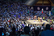 Lower-ranked sumo wrestler Ikioi upset the tournament by defeating a top-ranked wrestler and crowd-favourite Kakuryu.