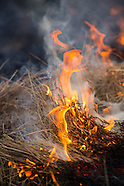 20130307 Burn