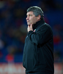CARDIFF, WALES - Friday, October 11, 2013: Wales' coach Osian Roberts during the 2014 FIFA World Cup Brazil Qualifying Group A match against Macedonia at the Cardiff City Stadium. (Pic by David Rawcliffe/Propaganda)