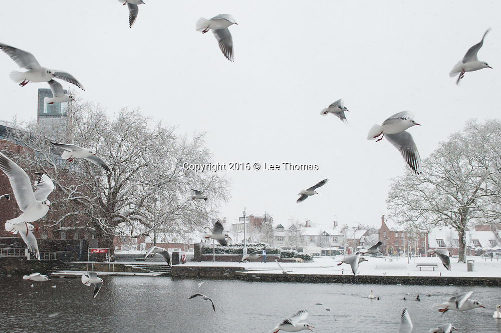 Stratford-Upon-Avon, Warwickshire, UK. 10th December 2017.   Stratford-Upon-Avon wakes up to a blanket of snow with heavy downpours predicted later today. Pictured: Visitors and locals venture out near to the RSC theatre. // Lee Thomas, Tel. 07784142973. Email: leepthomas@gmail.com  www.leept.co.uk (0000635435)