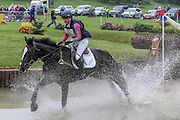 HARELAW WIZARD ridden by Emily Parker at Bramham International Horse Trials 2016 at  at Bramham Park, Bramham, United Kingdom on 11 June 2016. Photo by Mark P Doherty.
