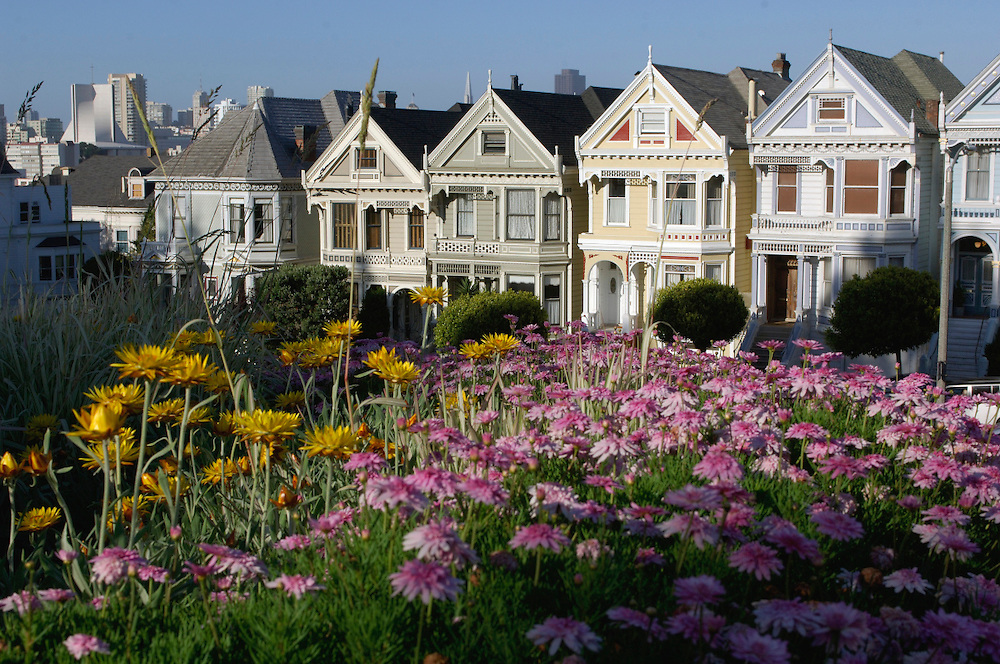 Flowers at The Painted Ladies, Victorian Houses, Alamo Square, San Francisco, California, United States of America