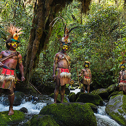 Huli wigmen in traditional full body wear, Tari, Papoea New Guinea