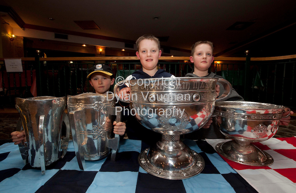 15/1/2009.From left Declan Duggan aged 7, James Brennan aged 9 and Sean Brennan Aged 9 from Mullinavat pictured last night in the Rising Sun in Mullinavat with from left the Irish Press Cup (minor Hurling), the Liam McCarthy Cup (senior Hurling), The Sam Maguire Cup (senior football) and The Tom Markham (minor football)..Picture Dylan Vaughan