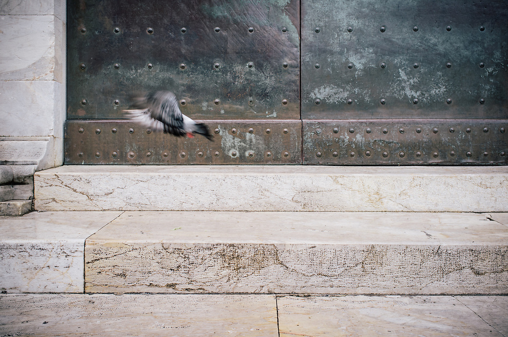 A pigeon on the steps of the Campo Santo cemetery in the Piazza dei Duomo in Pisa, Italy