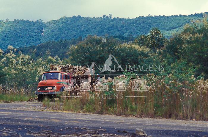 Caminhao transportando madeira retirada da mata nativa para industria de carvao em Sideropolis, Criciuma, Santa Catarina, Brasil. foto de Ze Paiva/Vista Imagens