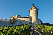 The Munot, Schaffhausen's iconic circular fortress, was built by forced labor in 1564 after the religious wars of the Reformation. A steep stairway climbs from Old Town through vineyards to reach this impressive Renaissance castle. Inside the tower, ascend the spiral staircase for views over a patchwork of rooftops and spires to the Rhine and forested hills. Down in the lower chamber, explore a spectacular, cool vaulted casemate. Schaffhausen, Switzerland, Europe.