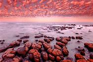 Stromatolites at dawn, Shark Bay, Western Australia