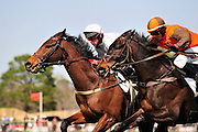 27 March 2010 : William Dowling and AMBERSHAM (right) battle with Brian Crowley and ARCADIUS in the Woodward Kirkover hurdle race at the Carolina Cup. ARCADIUS (left) would go on to win the race.