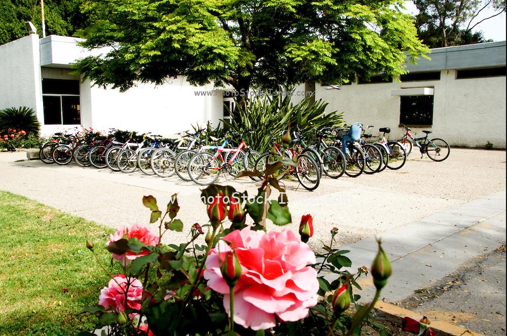 Israel, Jordan Valley, Kibbutz Ashdot Yaacov. Bicycles park near the central dinning room