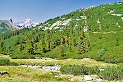 Zillertal High Alpine nature Park Hochgebirgs Naturpark near Ginzling, Tyrol, Austria