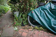 A mountain bike left in an overgrown back garden, partially-covered by a thin tarpaulin in undergrowth.