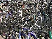 rows of bicycles at a school Beijing China